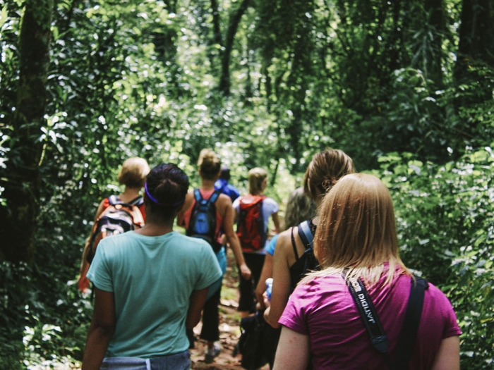 Students hiking through the woods